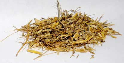 Witches Grass cut 1oz